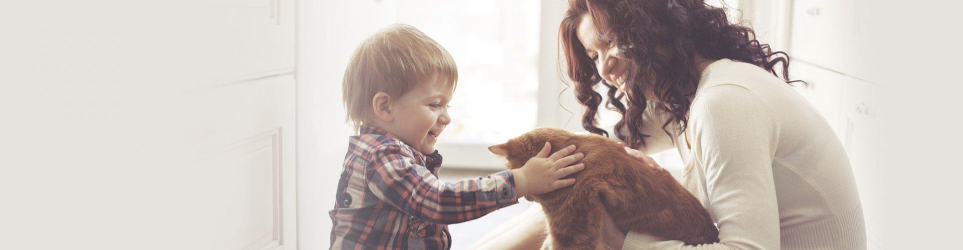ипотека, семья, деньги, накопить на ипотеку, собака