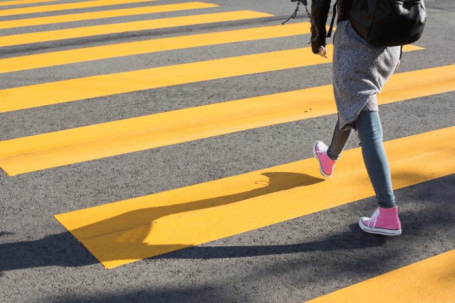 зебра, пешеходный переход