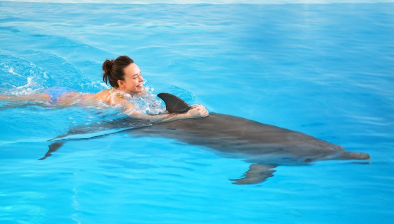 девушка, дельфин