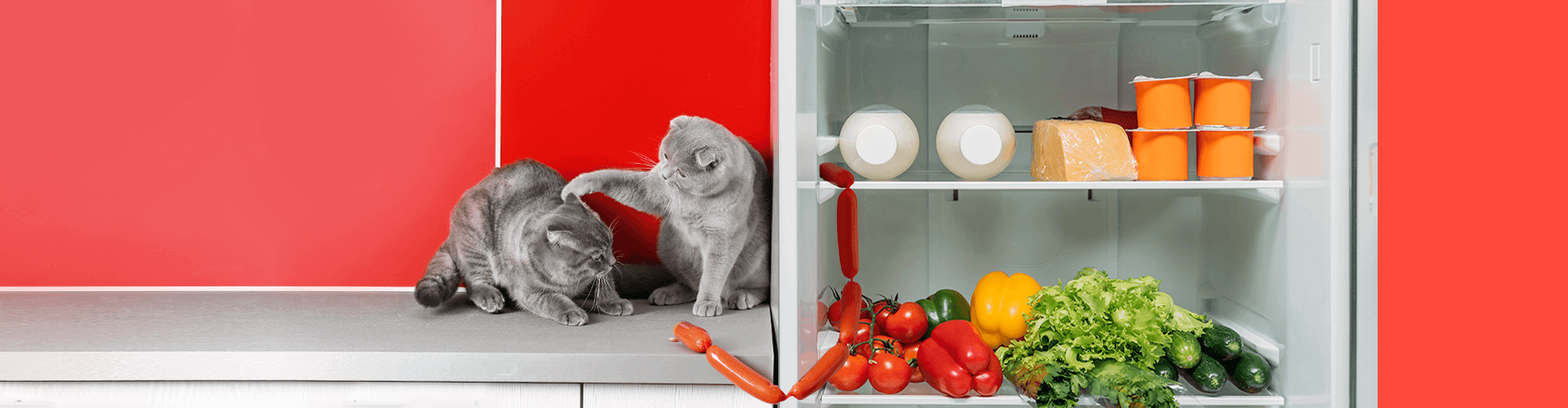 10 шагов к разумным тратам на продукты
