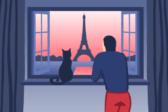 как оформить международный ветеринарный паспорт