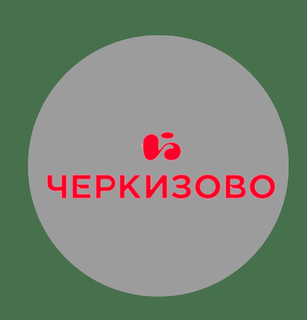 Лидия Михайлова, черкизово, топ-10 самых богатых женщин России