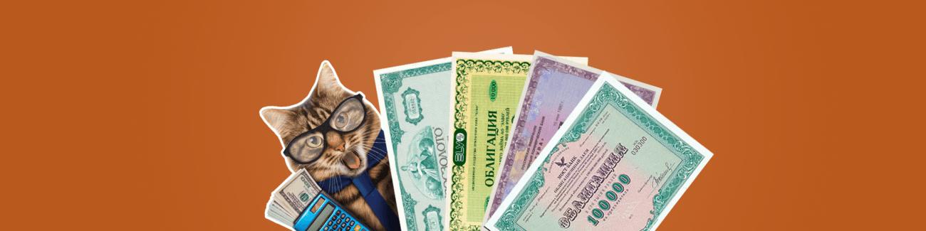 кот, облигации, деньги, калькулятор