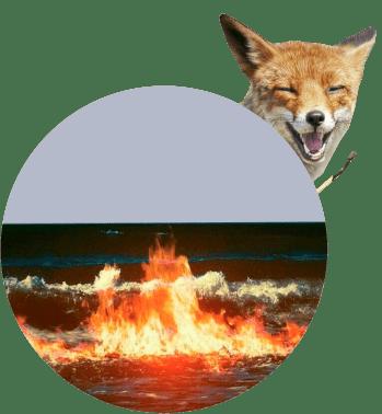 Море лиса спичка, пожар
