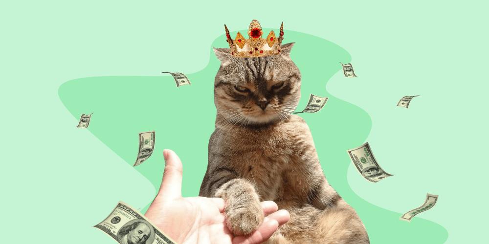 богатый кот, корона, деньги