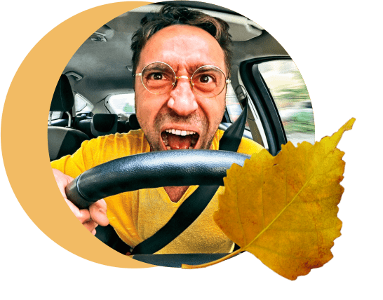 лист, водитель