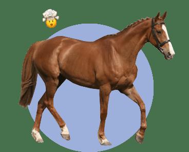 Лошадь Грин Манки