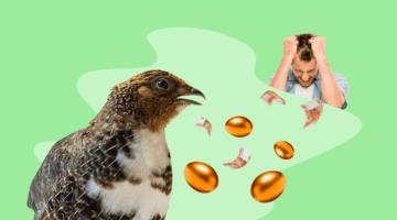 перепелка яйца золотые деньги