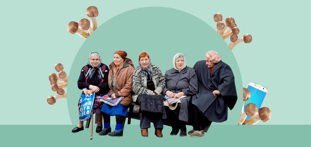 бабушки у подъезда опята грибы телефон