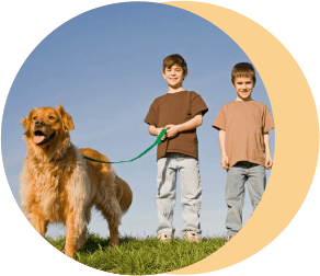 дети собака