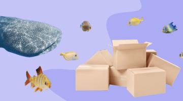 Коробки и рыбы
