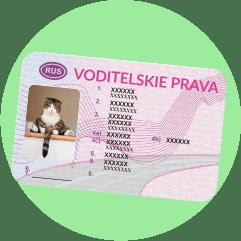 """водительские права, на которых крупно написано """"VODITELSKIE PRAVA"""""""