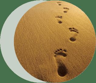 цепочка следов на песке