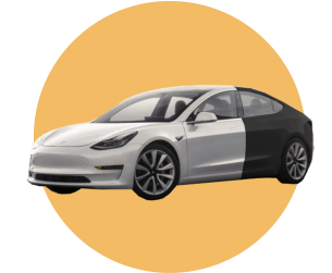 Черно-белая Тесла