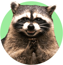 Вакансия - смотритель за енотом