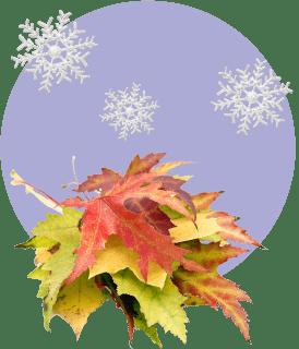 Ноябрь: ориентируемся на интуицию