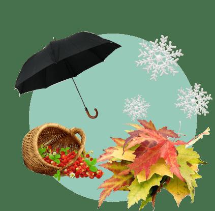 Шаг 2. Определите сезонность спроса на товар
