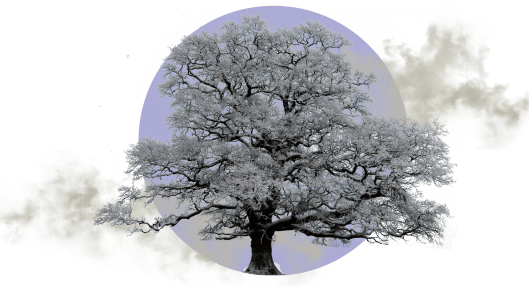 Февраль — месяц пессимизма