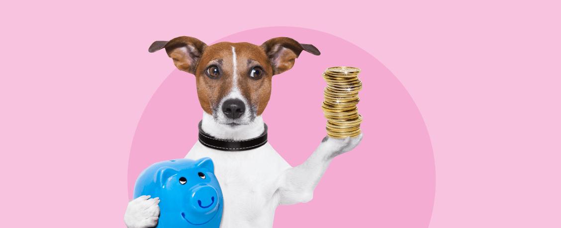 Пройти кризис без потерь: как сохранить свои сбережения