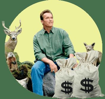 Экология и лоббирование