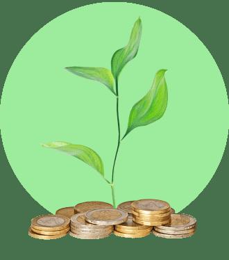 Что такое зеленые акции