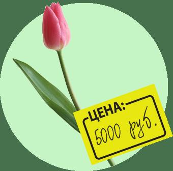 Цветы — дарить, но после 8 Марта