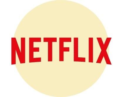 7 место: Netflix (США)