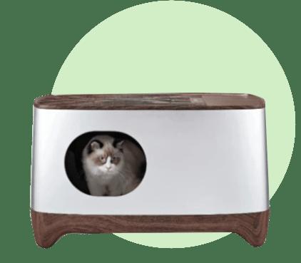 Умный туалет для котиков