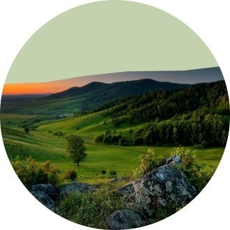 8 место: Алтайский край