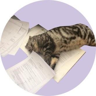 Какие документы понадобятся