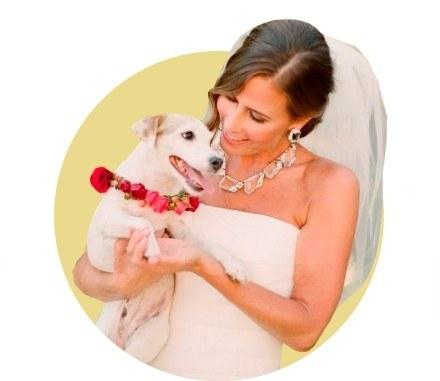 Максимилиан и собачья свадьба