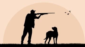 «Лосю все равно, убили его или добыли». Сколько стоит собраться на охоту?