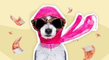 Шоб я так жил: топ-10 самых богатых собак в мире