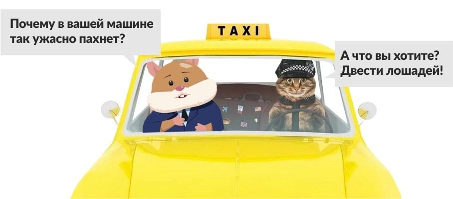 хомяк Жора Капустин в такси