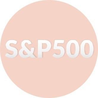 Стратегия: покупаю только акции из индекса S&P500