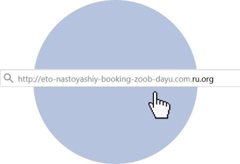 Какбыбукинг: фишинговые сайты