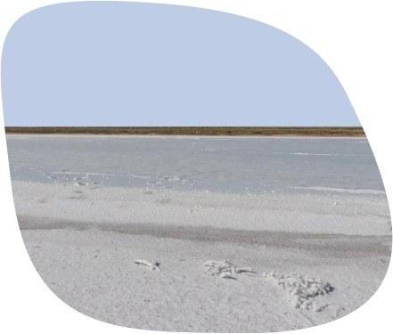 Мертвое море Калмыкии
