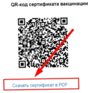 Как получить QR-код на Госуслугах