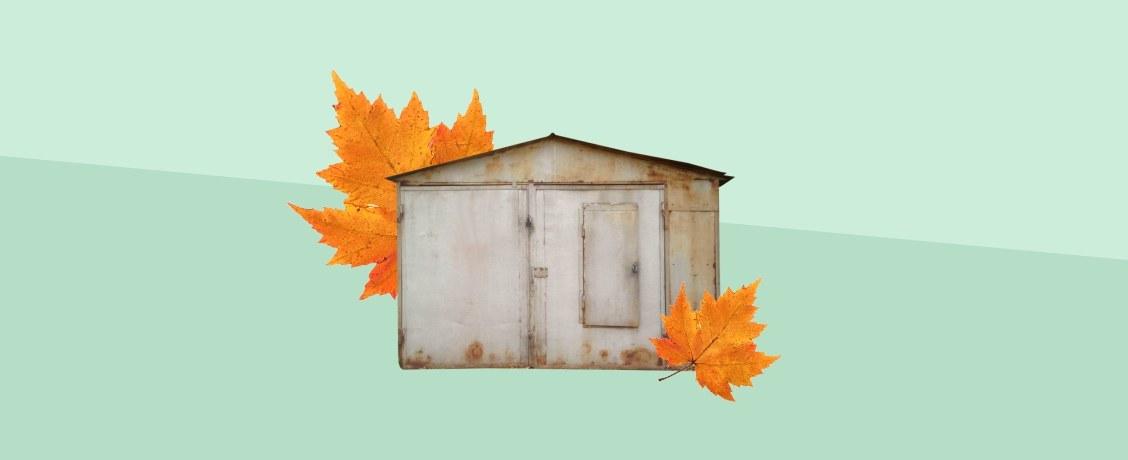 Раздача денег и гаражей: что ждет россиян в первый месяц осени