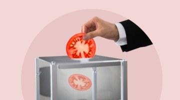 Поели и хватит: как изменятся цены на продукты после выборов