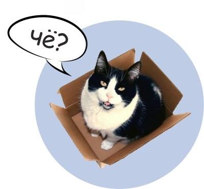 Жилой комплекс для кошки